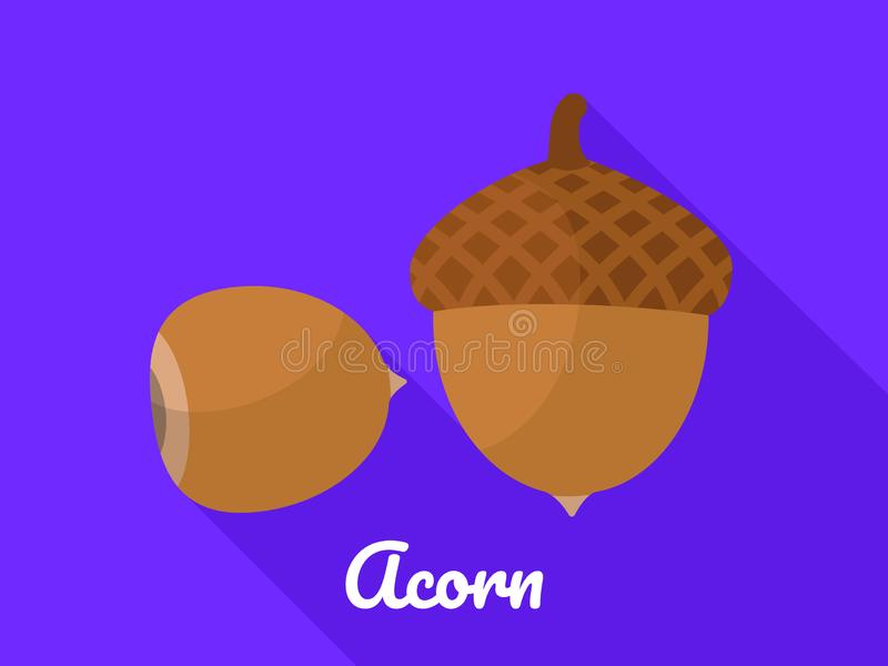 Acorn icon, flat style. Acorn icon. Flat illustration of acorn vector icon for web design vector illustration