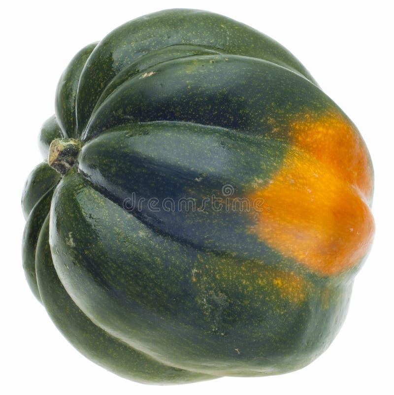 acorn kabaczek zdjęcie stock