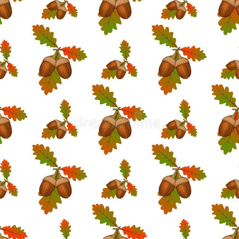 Acorn seamless pattern vector. royalty free illustration