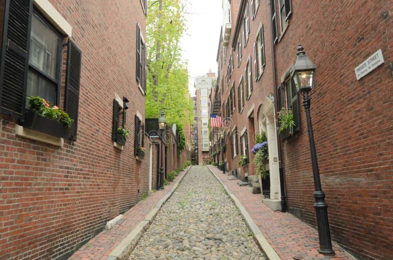 acorn ulica zdjęcie stock