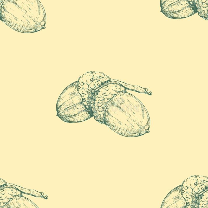 Acorn. Vector seamless pattern. Hand drawn illustration. Autumn background stock illustration