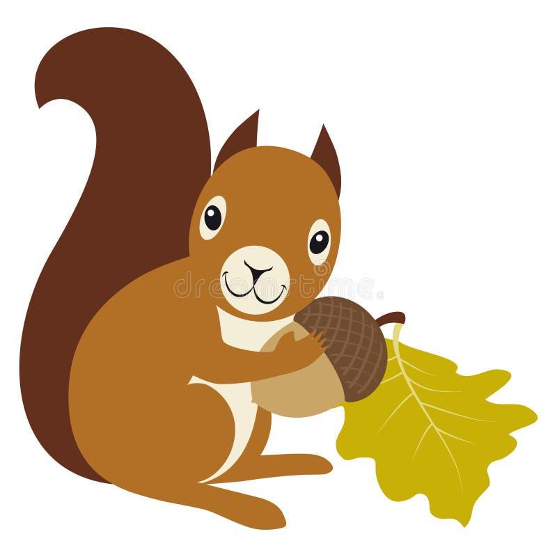 acorn wiewiórka ilustracji