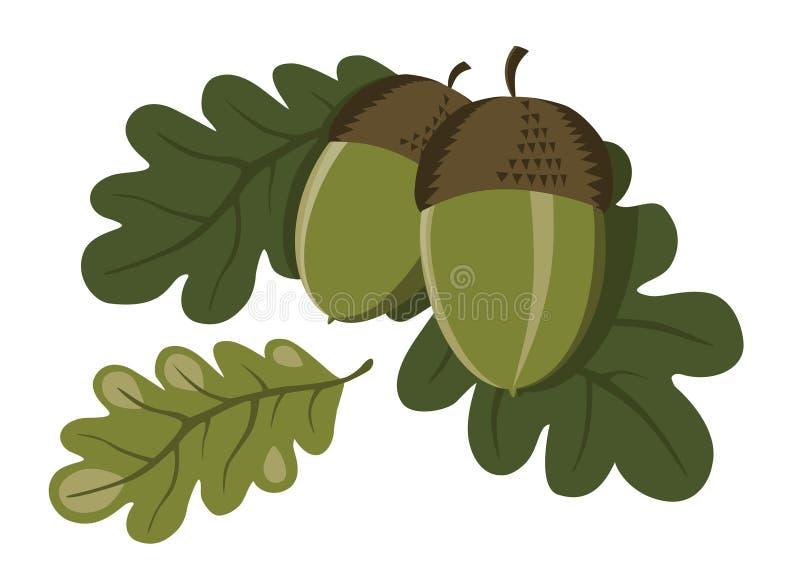 acorns liść royalty ilustracja
