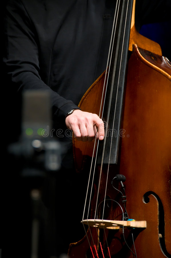 Acoustic double bass player stock photography