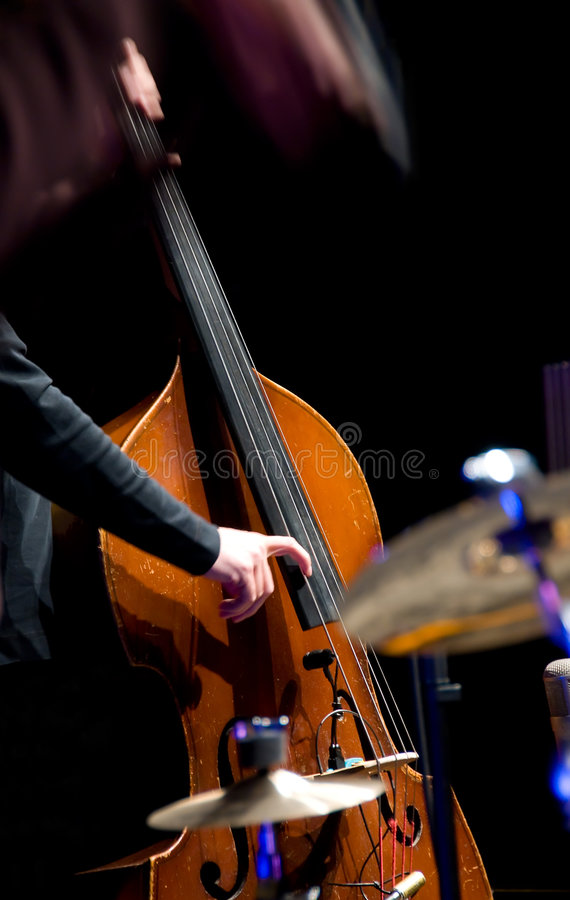 Acoustic double bass player royalty free stock photos