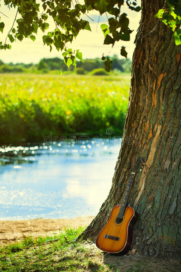 Download Acoustic Guitar stock photo. Image of music, nature, branch - 26935642