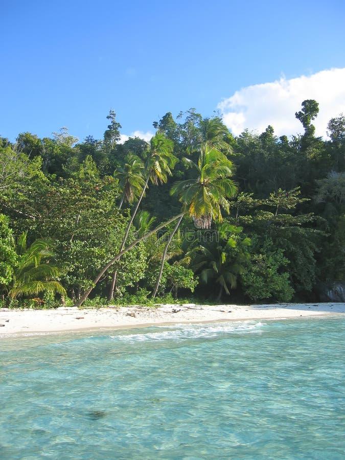 Acqua blu e spiaggia tropicale fotografia stock libera da diritti