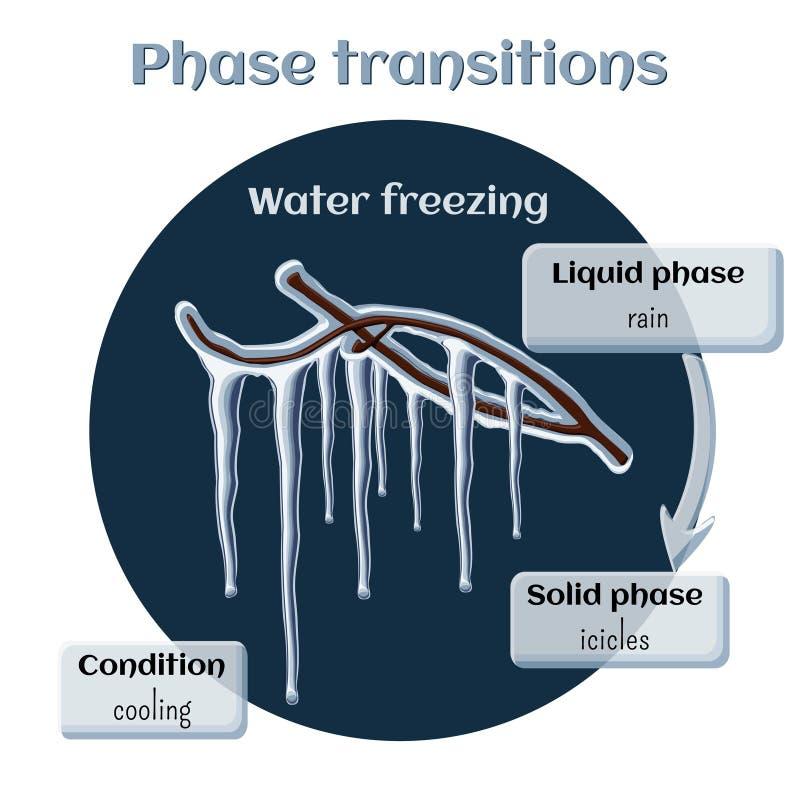 Acqua che si congela - ghiaccioli sui rami di albero Transizione di fase da liquido allo stato solido illustrazione vettoriale