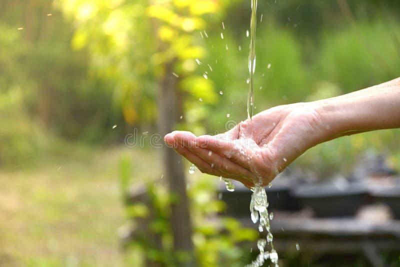 Acqua che versa in mano della donna sulla natura fotografia stock