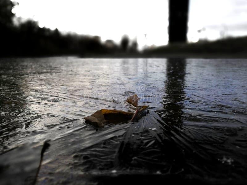 Acqua congelata fotografie stock