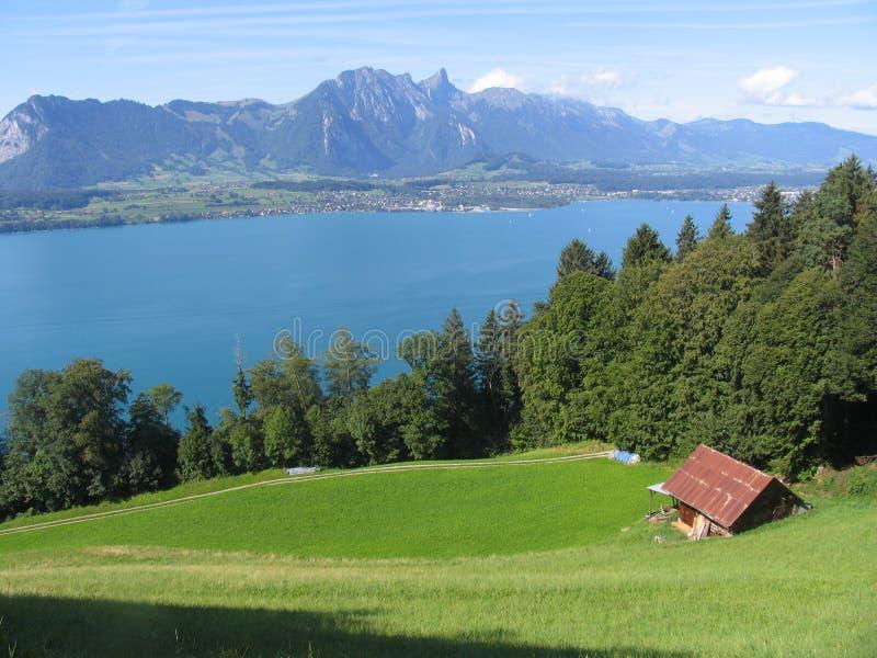 Acqua del campo del lago Thun fotografia stock libera da diritti