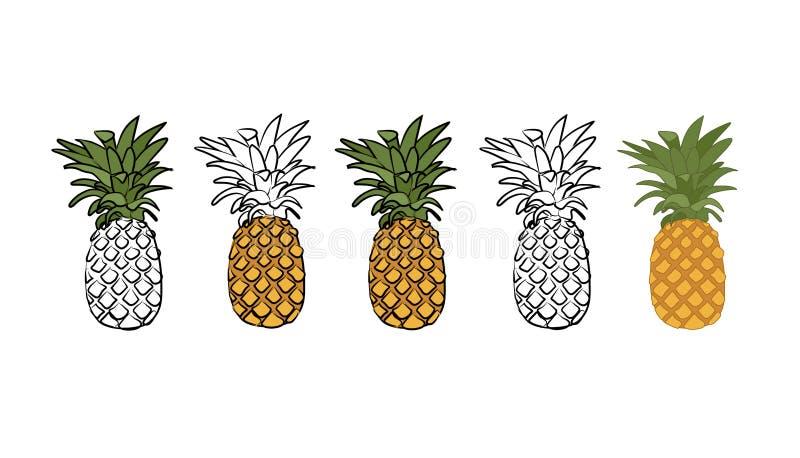 acqua dell'ananas della pittura dell'illustrazione di colori fotografia stock libera da diritti