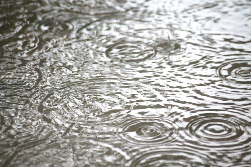 Acqua della pioggia immagine stock libera da diritti