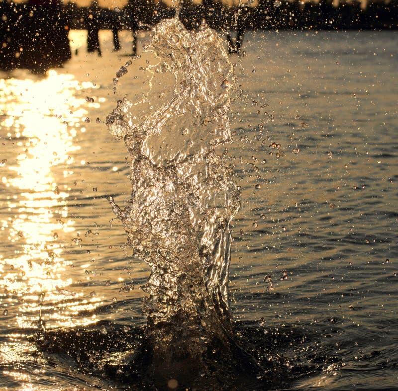 Acqua della spruzzata backlit fotografia stock libera da diritti