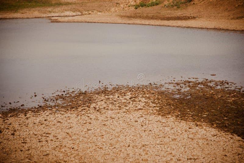Acqua dello stagno con la foto naturale di superficie del suolo secco immagine stock libera da diritti