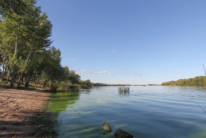 Acqua di fiume con il cavallo, alberi verdi, colline su cielo blu soleggiato, natura Riverscape, natura, ecologia, ambiente immagini stock