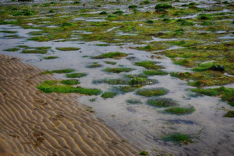Acqua di uscita dell'oceano sulla costa Irlanda del Nord fotografie stock libere da diritti