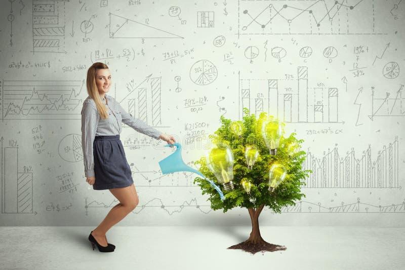 Acqua di versamento della donna di affari sull'albero crescente della lampadina fotografia stock libera da diritti