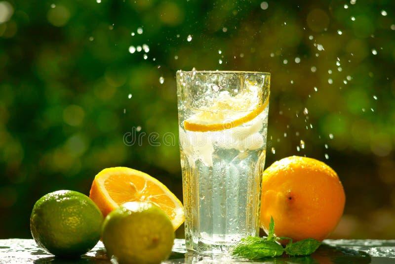 Acqua dolce con il limone, la limetta e la menta fotografia stock libera da diritti