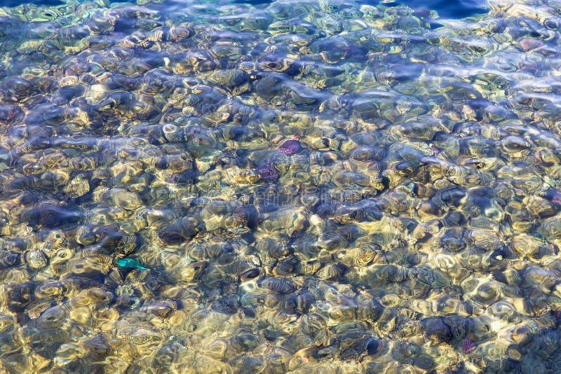 Acqua libera del Mar Rosso fotografia stock