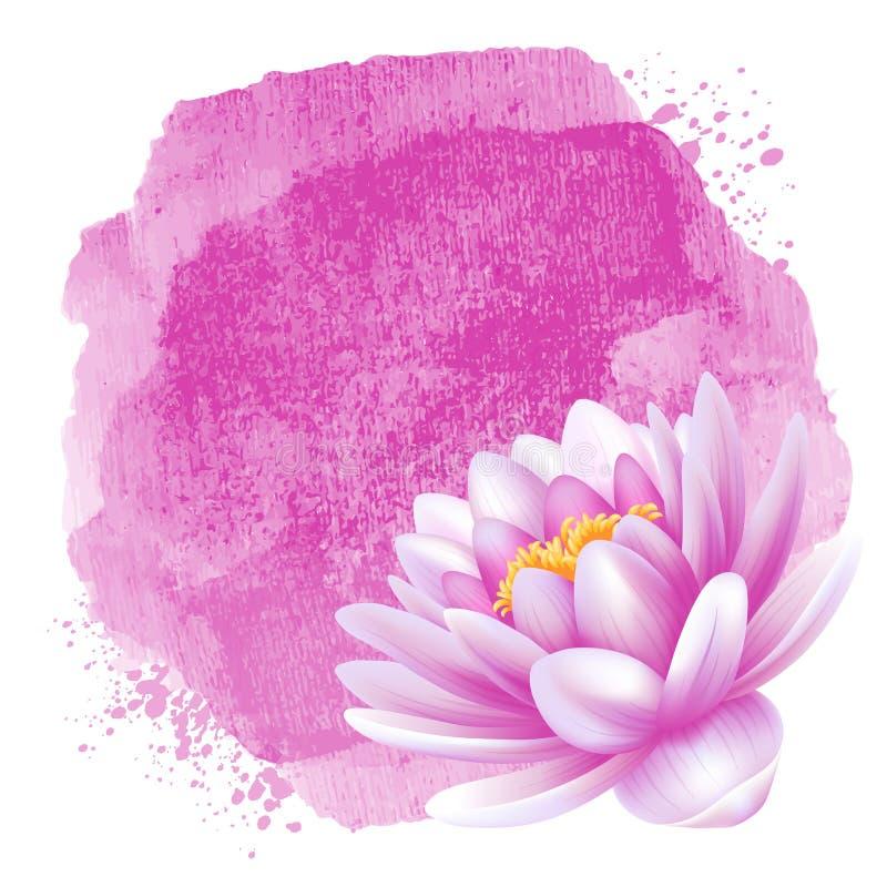 Acqua lilly royalty illustrazione gratis