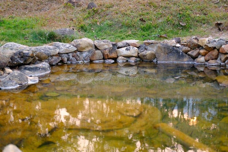 acqua minerale geotermica della sorgente di acqua calda fotografia stock libera da diritti