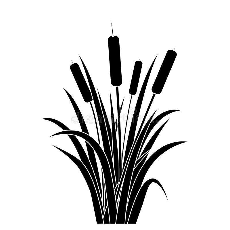 Acqua nera Reed Plant Cattails Leaf della siluetta Vettore royalty illustrazione gratis