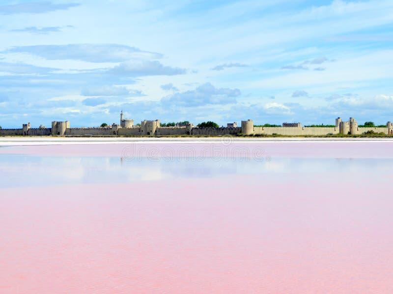 Acqua rosa nella laguna del sale fotografia stock