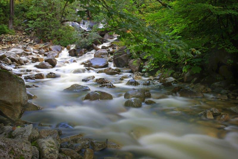 Acqua scorrente veloce sopra le rocce in un'insenatura immagini stock libere da diritti