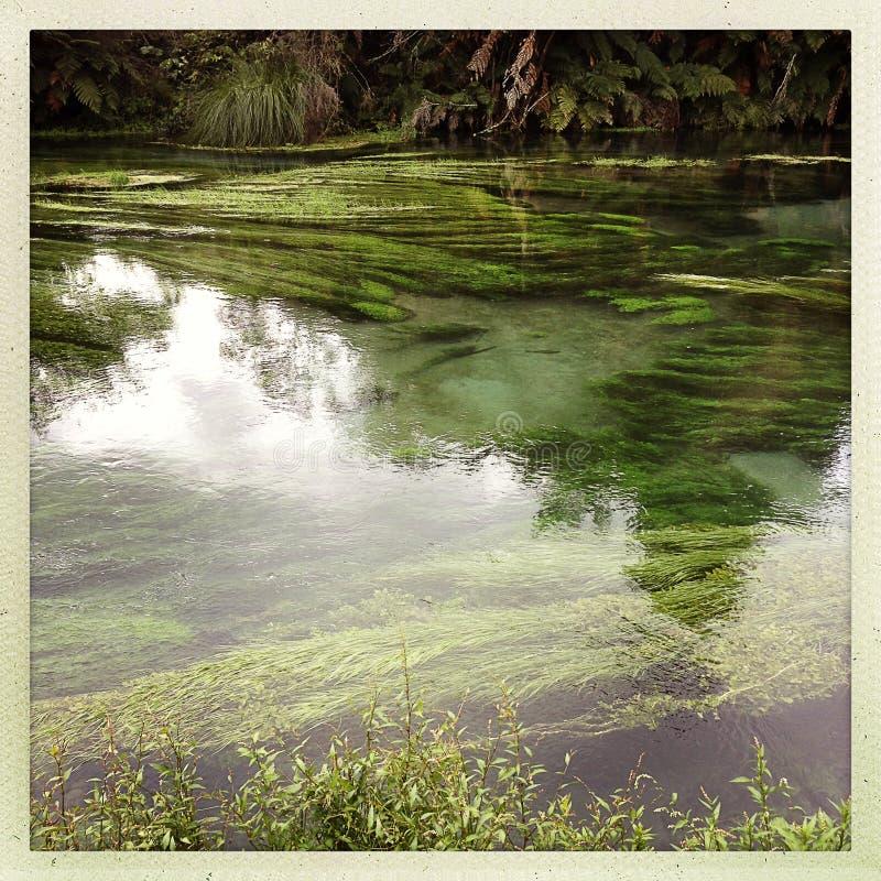 Download Acqua sorgiva fotografia stock. Immagine di fiume, esterno - 30829590