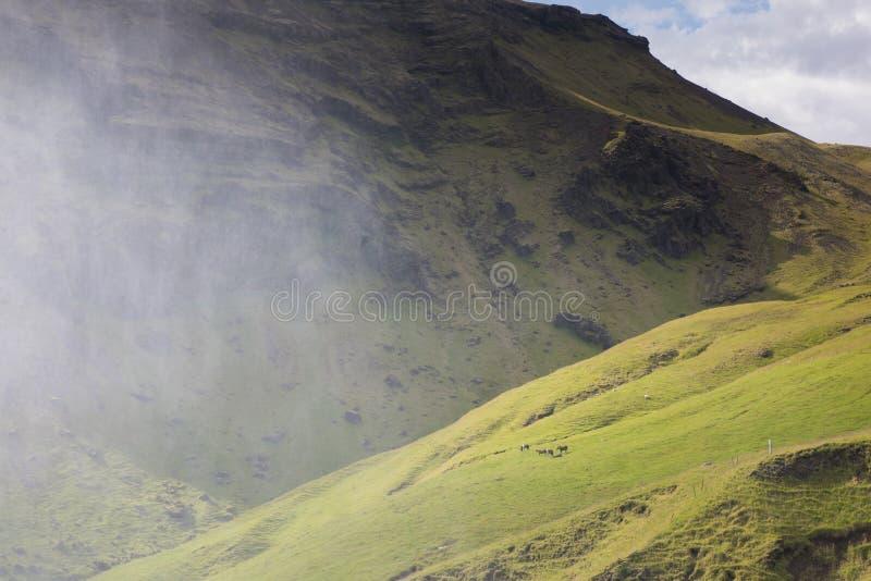 Acqua spruzzata nella valle con i cavalli dal bello Skogafoss fotografie stock