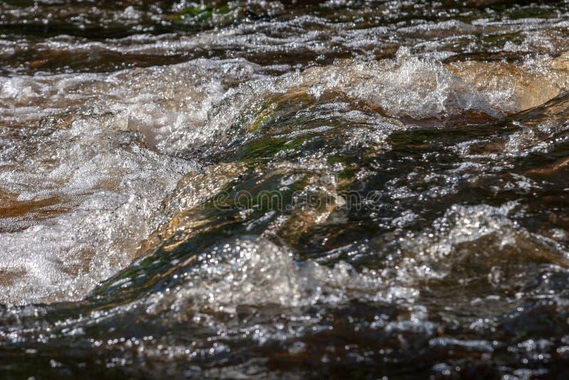 Acqua verde e marrone in un primo piano della corrente del fiume con le bolle e la schiuma immagini stock