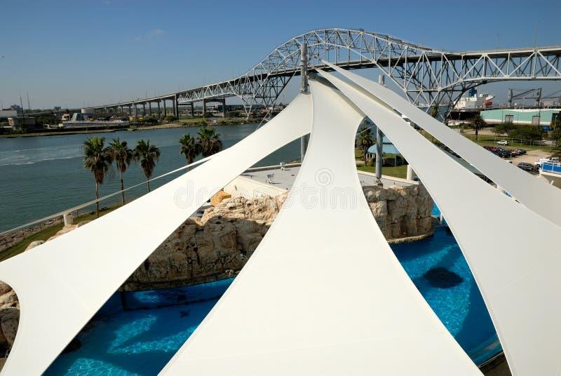 Acquario della condizione del Texas a Corpus Christi, Tx fotografie stock