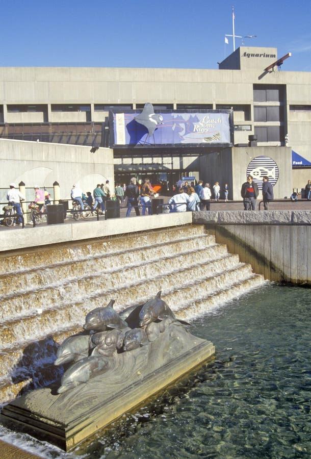Acquario della nuova inghilterra boston massachusetts for Acquario nuovo prezzi