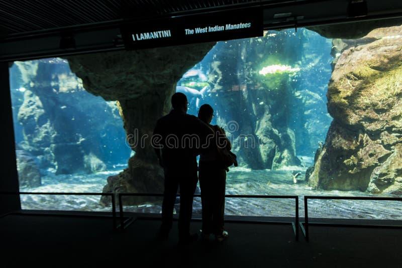 Acquario di Genova immagine stock libera da diritti
