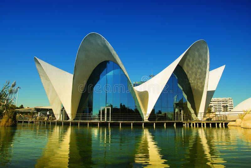 Acquario di Oceanografic, Valencia. fotografie stock