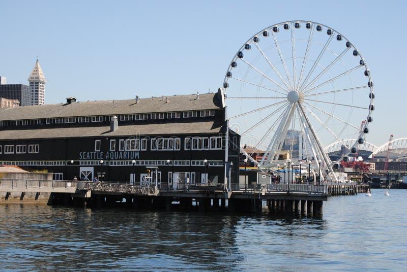 Acquario di Seattle fotografia stock libera da diritti