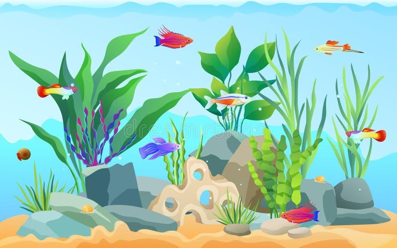Acquario disegnato a mano con le icone dell'alga e del pesce illustrazione di stock