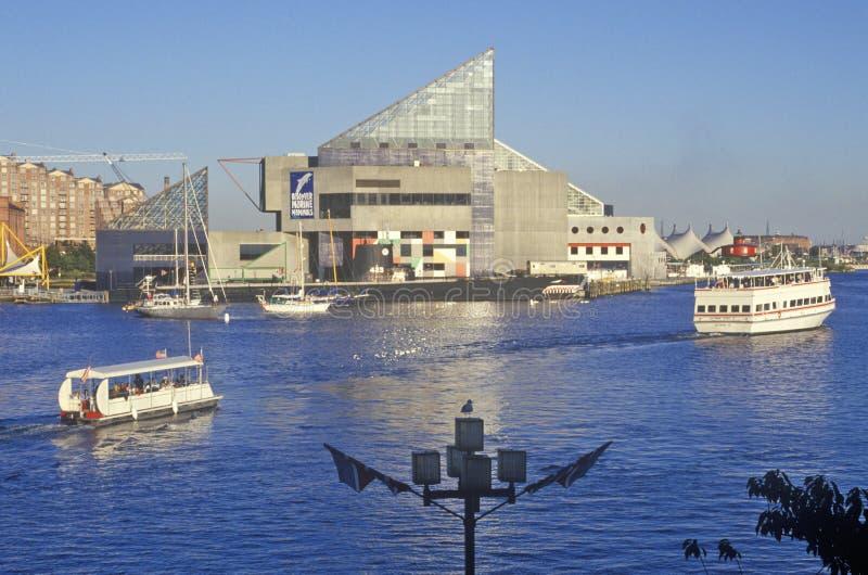 Acquario nazionale e porto interno, Baltimora, Maryland fotografia stock