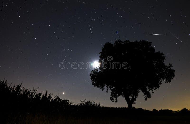 Acquazzone di meteora di Perseids fotografia stock libera da diritti