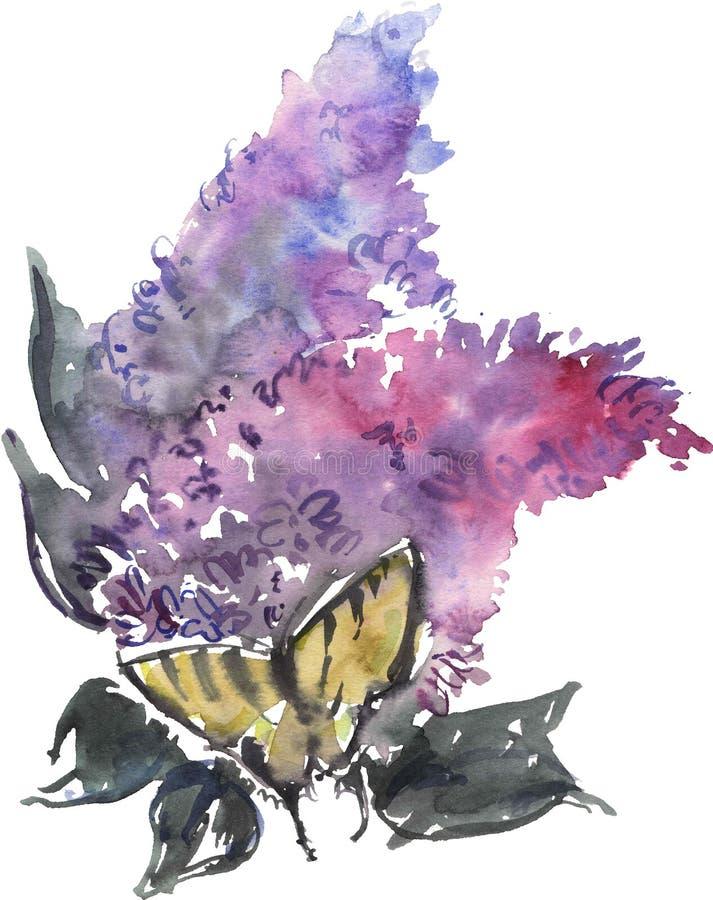 Acquerello che disegna lillà e farfalla blu illustrazione di stock