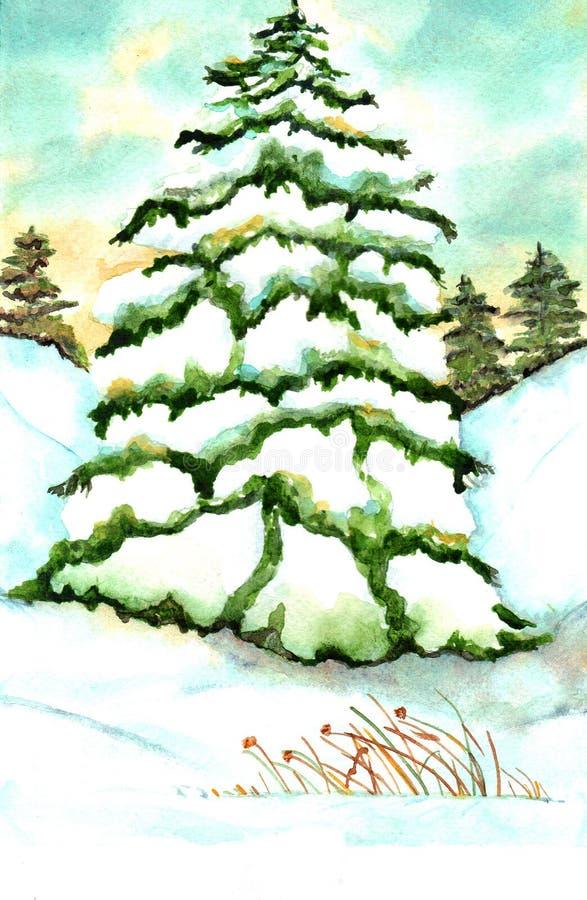 Acquerello del pino illustrazione di stock