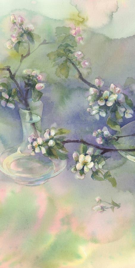 Acquerello della fioritura di melo illustrazione vettoriale