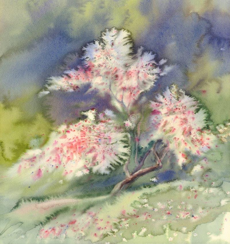 Acquerello di fioritura di melo illustrazione di stock