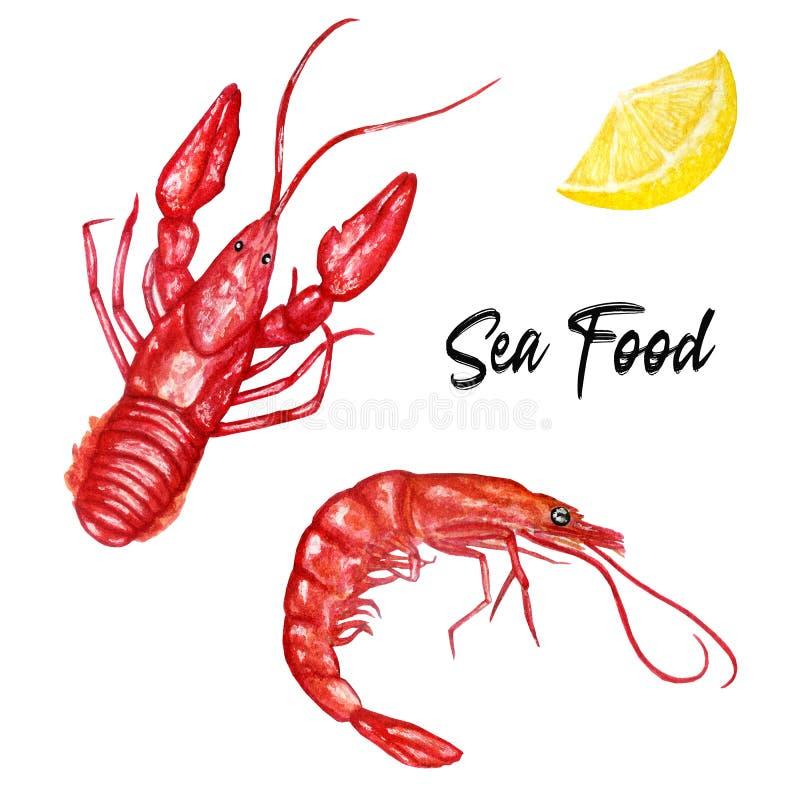 Acquerello messo con i frutti di mare Gamberetto e gambero royalty illustrazione gratis