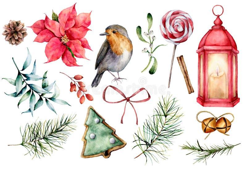 Acquerello messo con i simboli di Natale Piante dipinte a mano di inverno, uccello del ciuffolotto, decorazione isolata su fondo  illustrazione vettoriale
