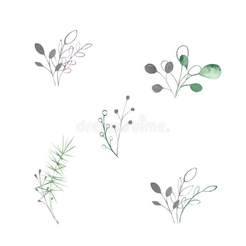 Acquerello messo con le foglie ed i rami d'argento, verdi, porpora, viola su un fondo bianco Ideale per le carte e gli inviti royalty illustrazione gratis