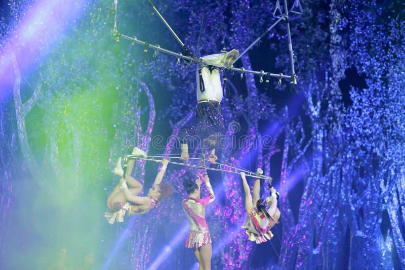Download Acrobatica Complessa Dell'oscillazione Fotografia Editoriale - Immagine di acrobatics, circus: 55356017