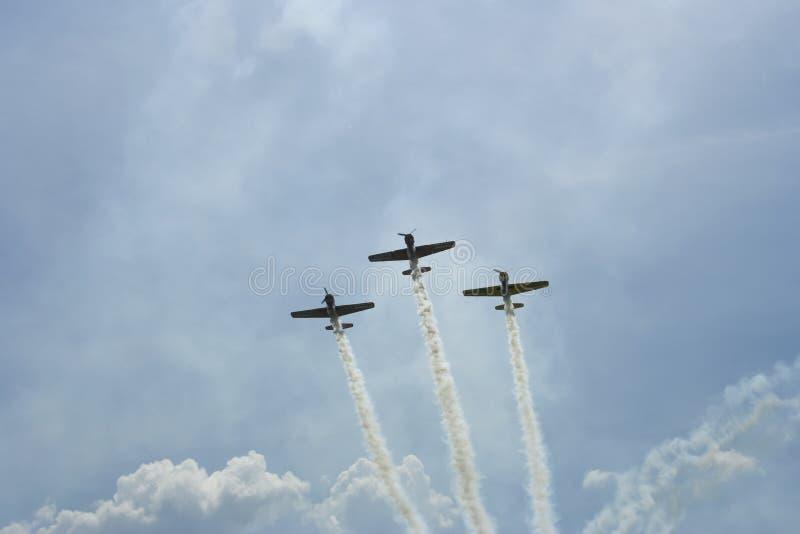 Acrobatische ruwe vlucht, stock foto's