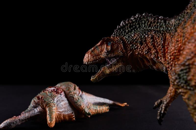 Acrocanthosaurus na frente do corpo do stegosaurus na obscuridade imagens de stock